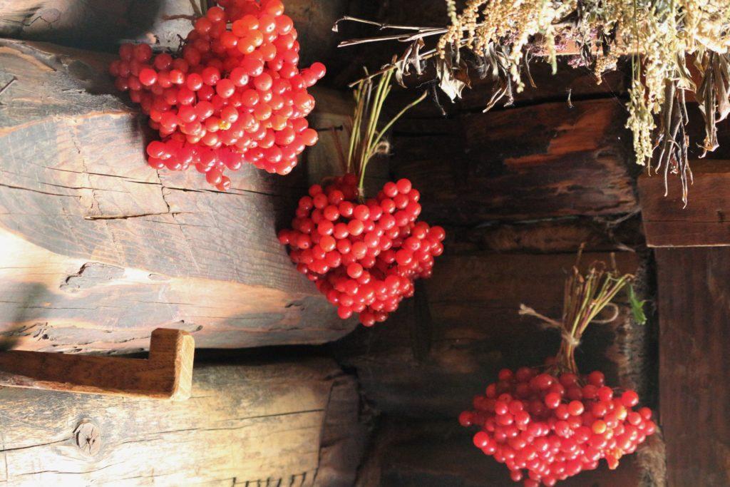 Kalinkenbeeren in der Hütte